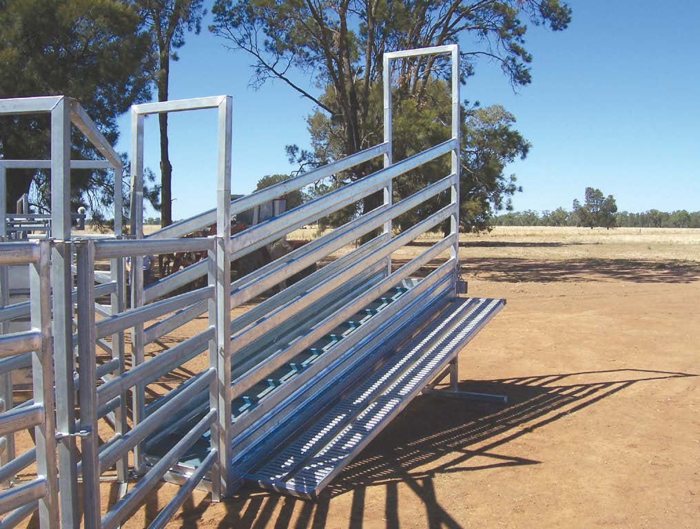 Bullock 3.6m with Walkway Cattle Loading Ramp