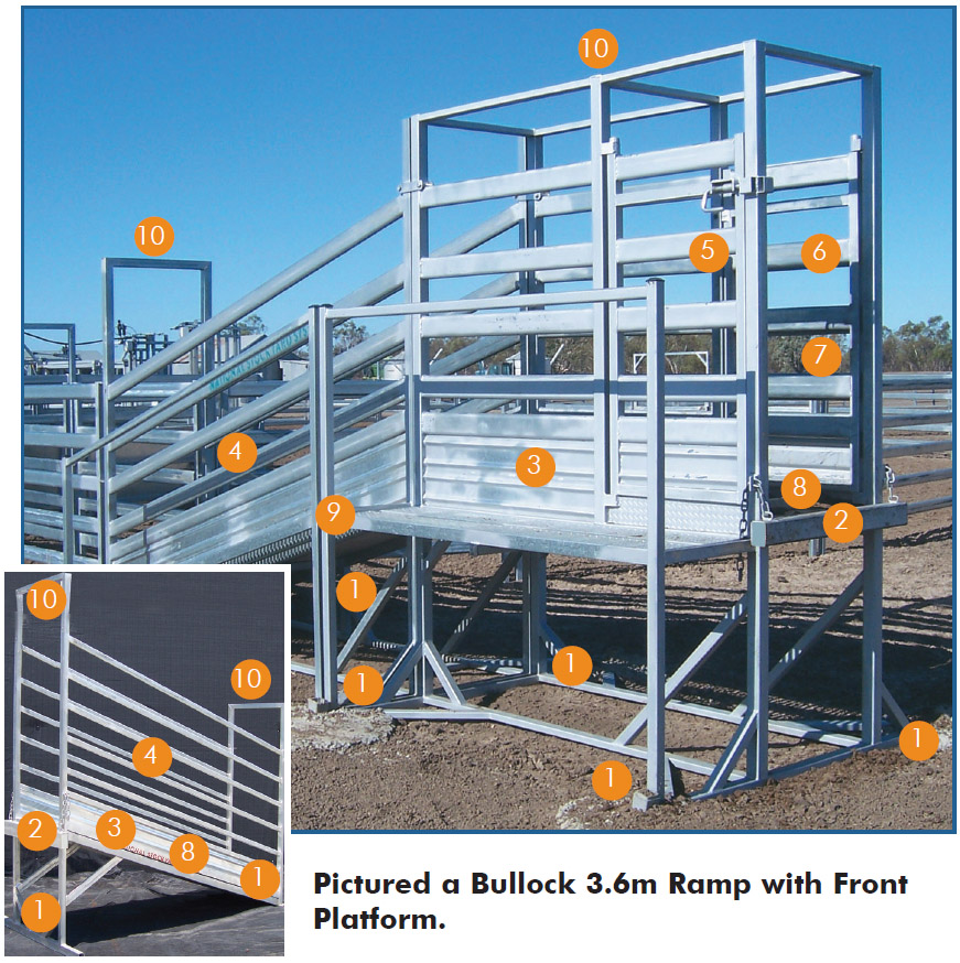 Cattle Loading Ramp with Concrete Floor