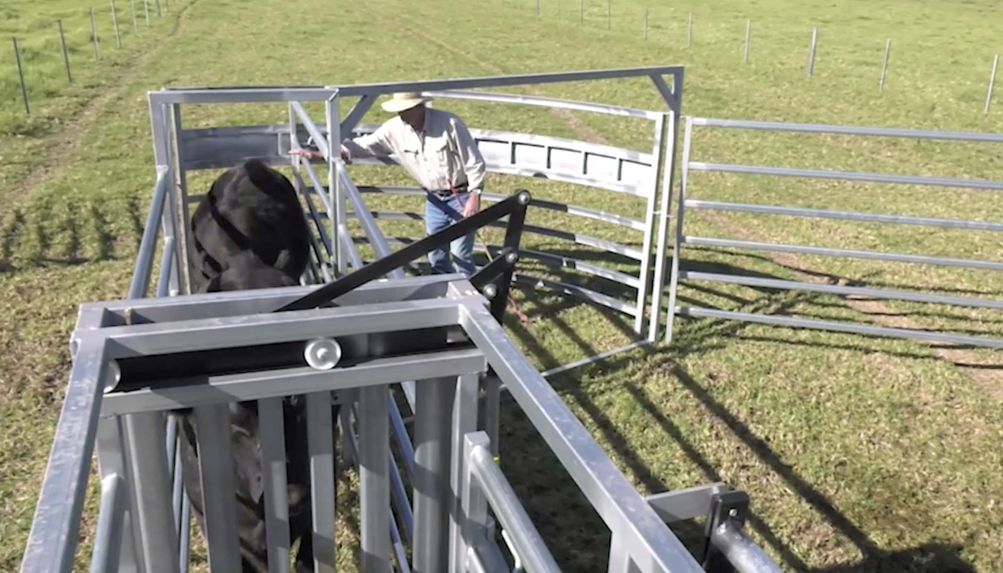 Budget Rotary Force Cattle Yards