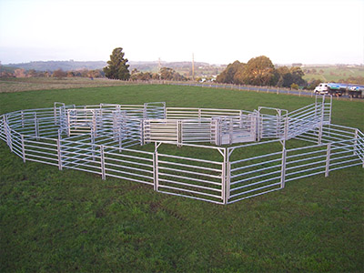 Australian Made Cattle Yards from National Stockyard Systems