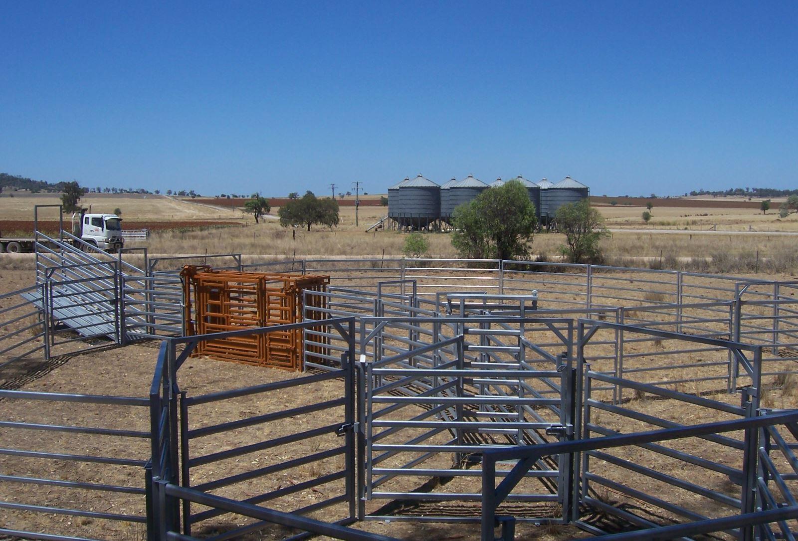 Mix & Match Cattle Yard Panel Sizes